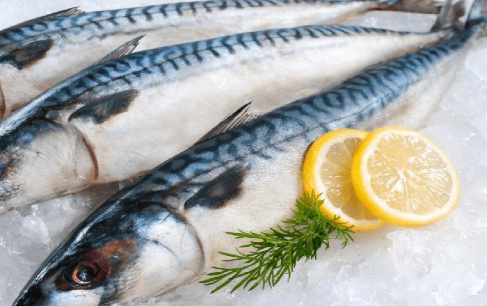 ăn cá biển khi mang thai