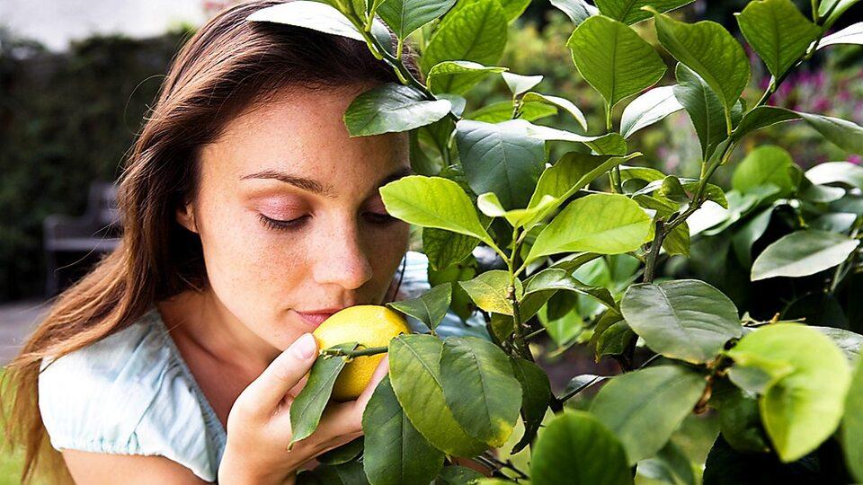 [giẢi ĐÁp chi tiẾt] 9 triệu chứng buồn nôn thường gặp bạn nên biết